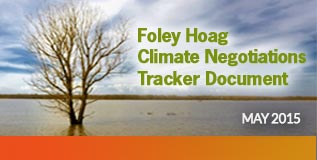 Foley Hoag Climate Negotiations Tracker Document
