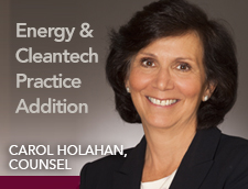 Carol Holahan Joins Energy and Cleantech Practice