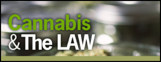 Read the Cannabis & the Law Blog